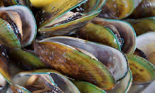 click here to view Fortune Fish Seafood Shellfish Products