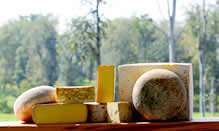 click here to read more about Sweet Grass Dairy Cheese